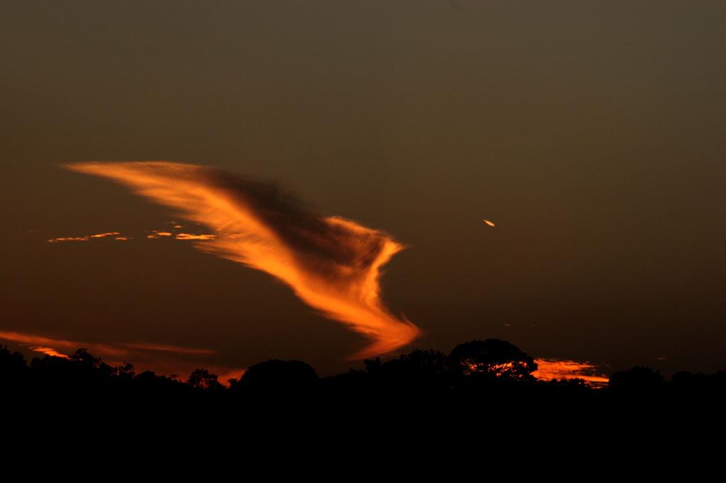 火の鳥と流れ星