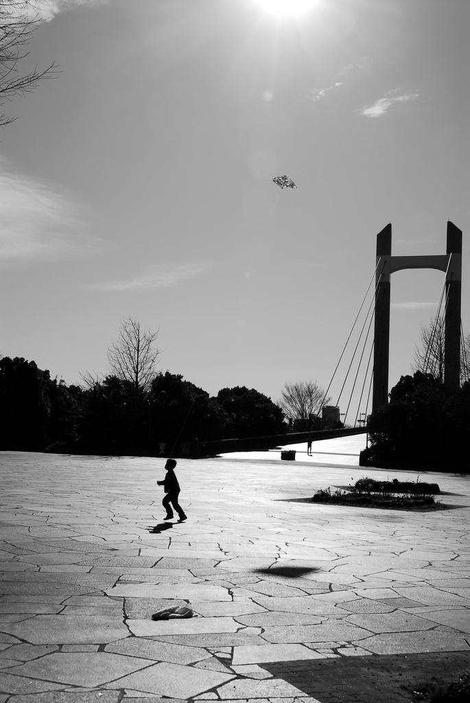 少年と凧と青空
