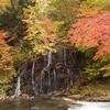 小滝と紅葉