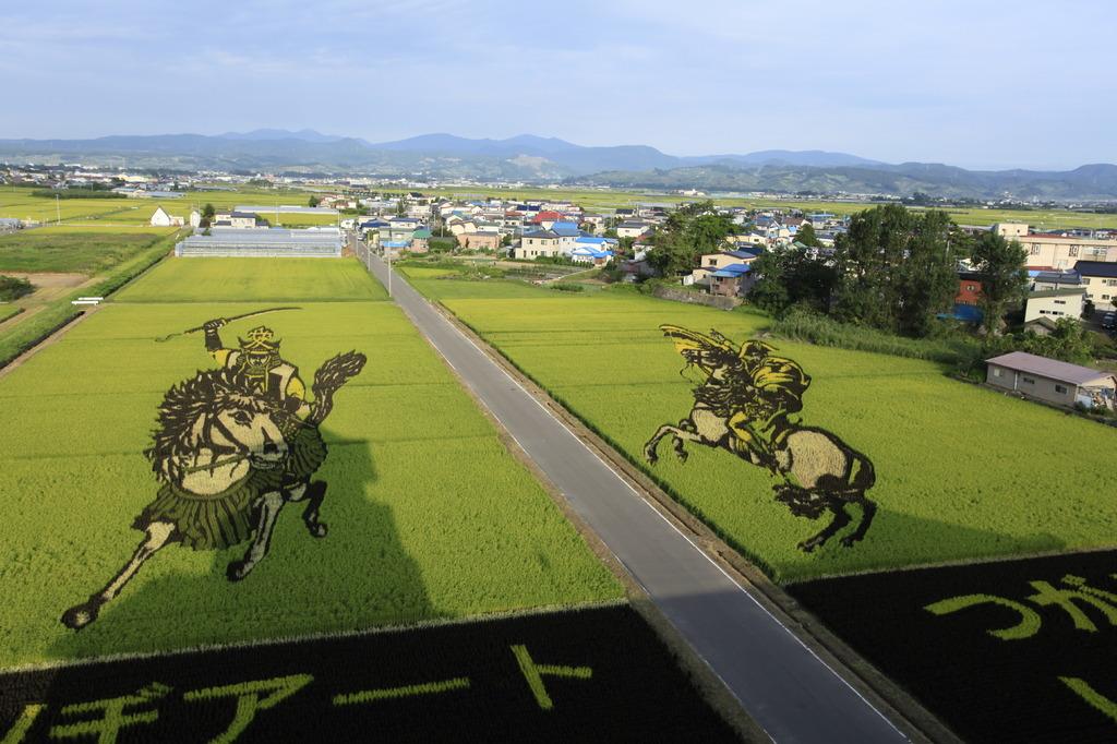 2009田んぼアート