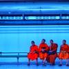 僧侶のたまご