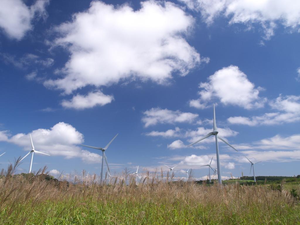 風の高原2009秋 ③
