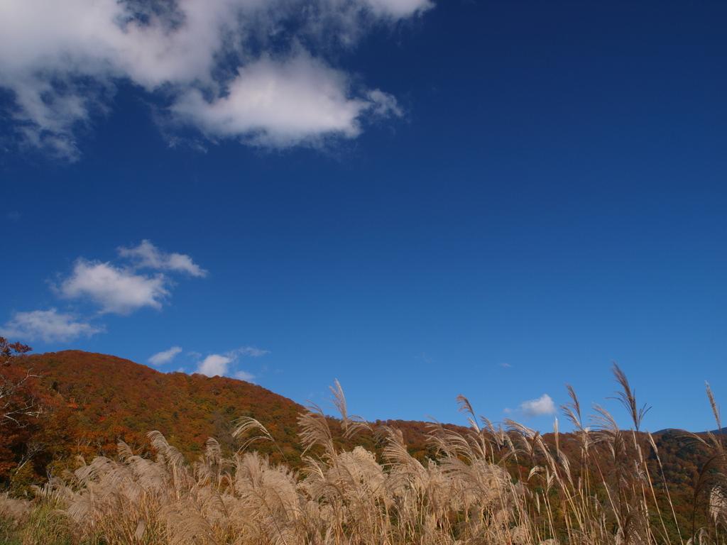 海抜1200mの秋空