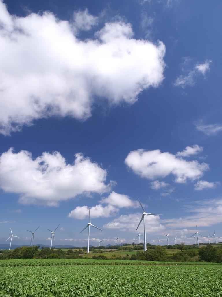 風の高原2009秋 ④
