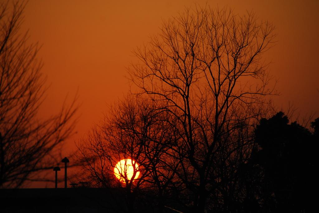 お台場で見た夕日