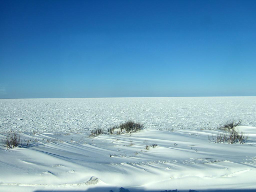広いの氷海
