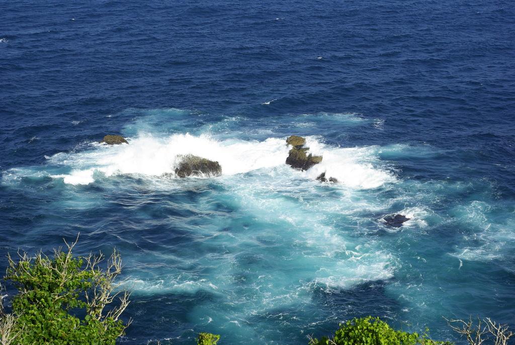 樫野崎灯台からの眺め