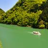 新緑の庄川峡