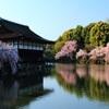 平安神宮春景色