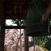 醍醐寺にて