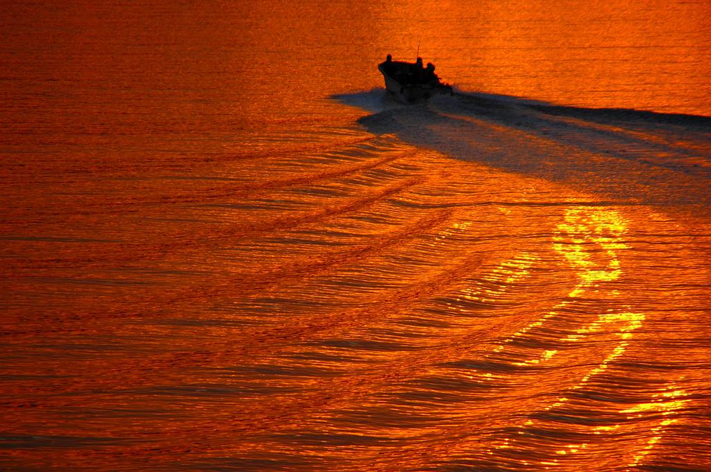 橙を滑る舟