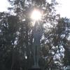 太陽の聖火