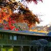 千葉県松戸市本土寺