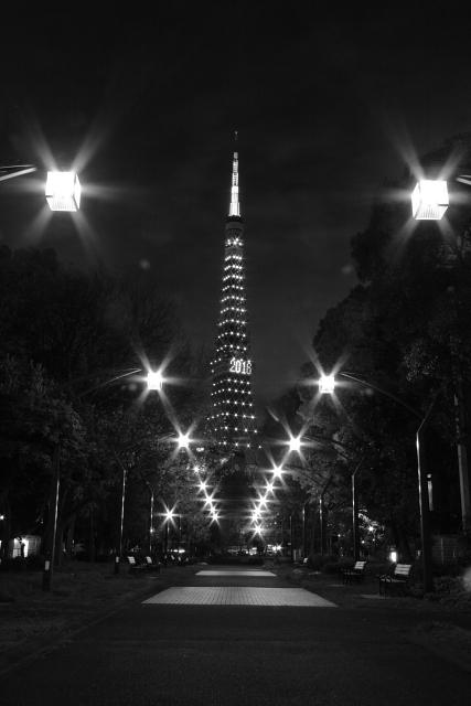 東京タワー 2009.4.20 #2