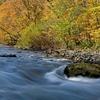 渓流の秋 1