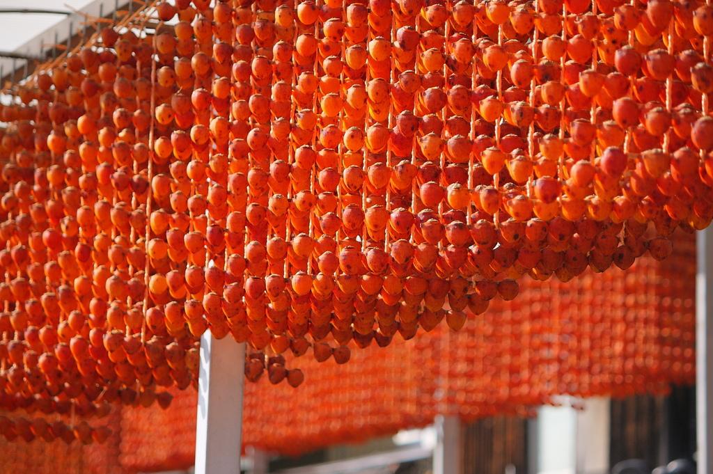 串柿の里にて