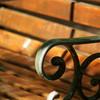木陰のベンチ -1