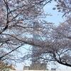 _008.4.3桜祭り_053.4.3隅田川_053