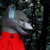 お稲荷様のこま狐