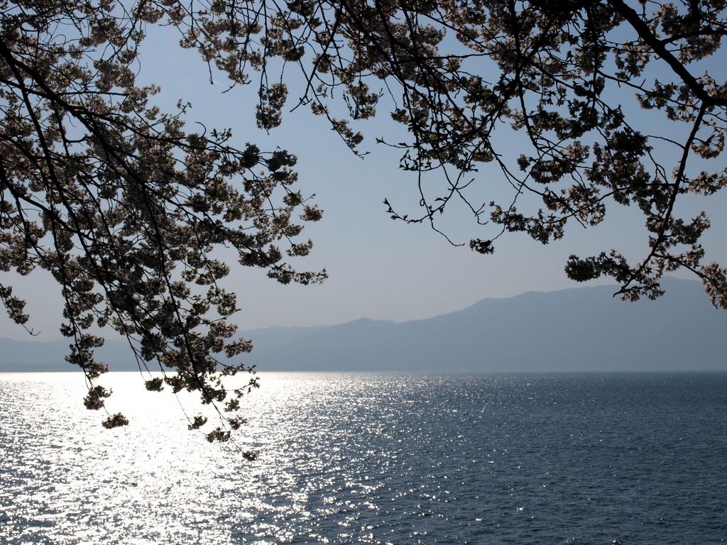 琵琶湖夕映え