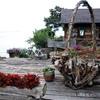 琵琶湖水ヶ浜
