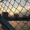 フェンスの向こう@大さん橋