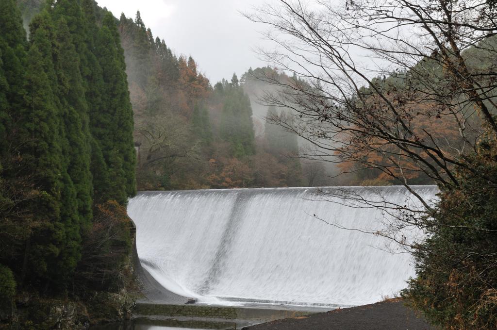 霧雨の白水ダム