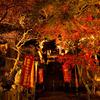 秋の夜の淡路島 その1