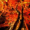 秋の夜の淡路島 その3