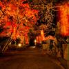 秋の夜の淡路島 その2