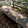 秋のベンチ