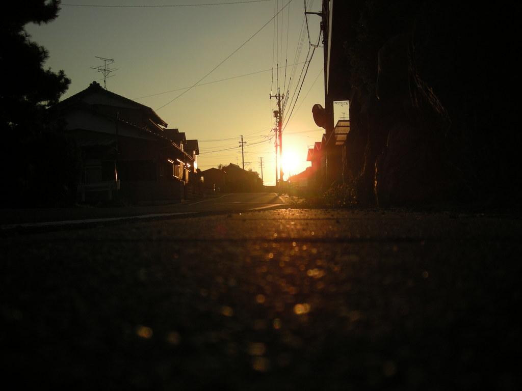 陽を浴びて