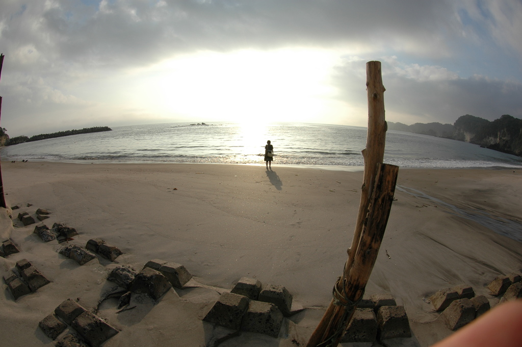 浜辺の幻想