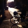 Evening-scene