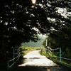 Bicycle-road