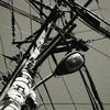 Utility-pole
