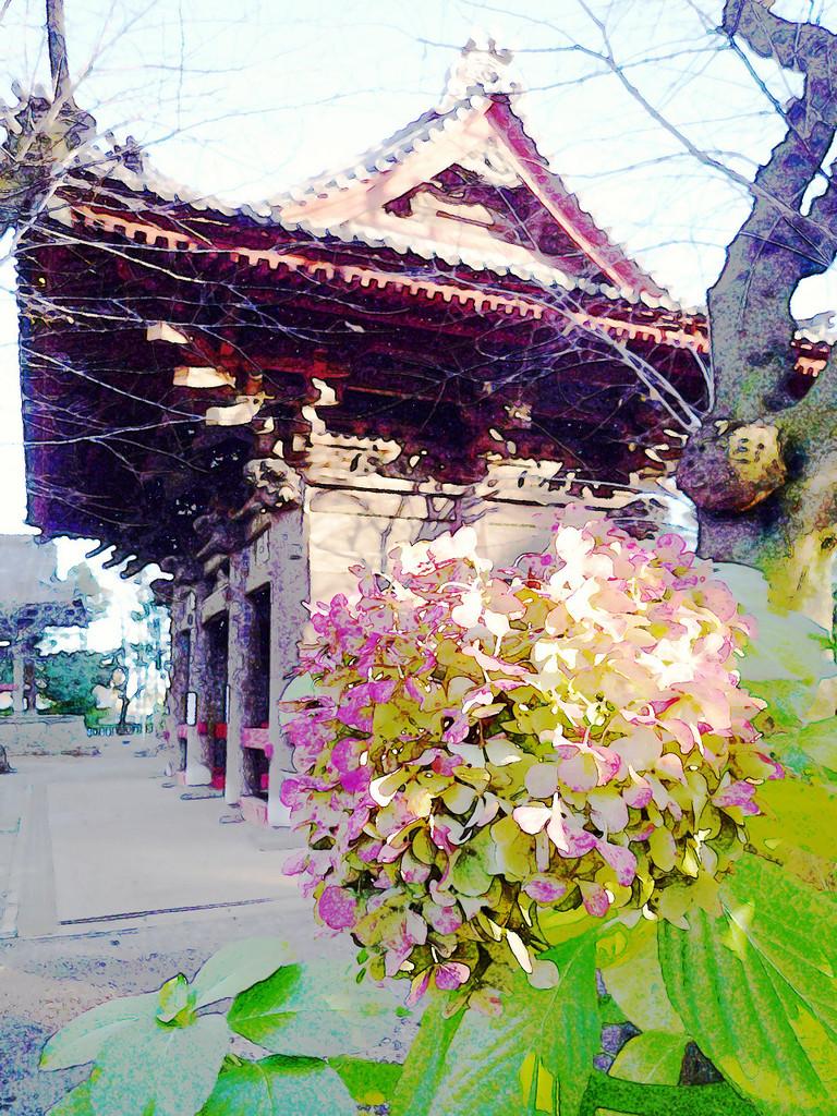 Japan-beauty
