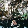Lotus-lake