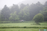 朝霧の廃屋