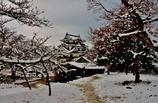 雪の彦根城散策 8