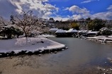 雪の彦根城玄宮園散策 Ⅰ