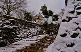 雪の彦根城散策 7