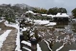 雪の彦根城玄宮園散策 Ⅲ