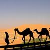 Desert Resort 2012 Summer_15