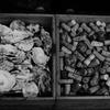 Oyster&Cork