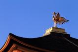 屋上の鳳凰像