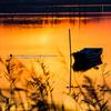 秋彩の沼.#2