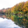Autumn perspective.
