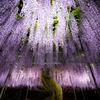 Purple lighting shower..