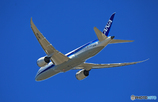 「良い天気」 ANA 787-8 JA838A飛行